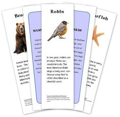 Animal classification cards for children - includes many mammals, birds, and SO much more along with facts and books that feature these animals.