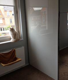 Mijn slaapkamer is comfortabel voor mens én dier! #IKEAcatalogus
