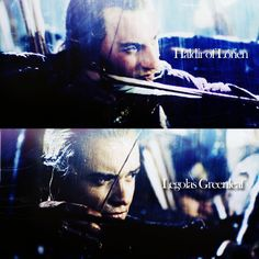 Haldir of Lorien and Legolas of Mirkwood. The two greatest, awesomest, kick-buttingest, coolest, most handsomest Elves around! If only I could be like them. lol XD