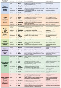 Table of 38 bach flowers – Keto Diet: What is a Ketogenic Diet? Ketogenic Diet Food List, Ketogenic Recipes, Diet Recipes, Diet Menu, Paleo Diet, Bach Flowers, Accupuncture, Keto For Beginners, Food Lists