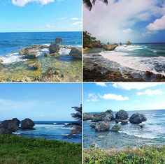 The beauty of the East Coast Barbados