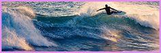 Offerta profumo d'estate dal 5 al 11 Giugno all' #HOTELZURIGO di Varazze (SV) Pacchetto 6 giorni pensione completa all-inclusive con spiaggia Adulto € 420,00 (camera Corallo), € 370,00 (camera Stella marina) Bimbi € 168,00 / 148,00 (da 6mesi a 2 anni) Bambini € 210,00 / 185,00 (fino a 12 anni) supplemento camera singola € 50,00 I prezzi si intendono a persona inclusi acqua, vino della casa e caffè.