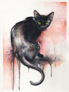Cat watercolors by Braden Duncan