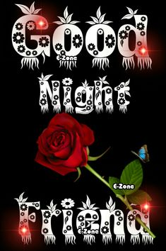 Lovely Good Night, Good Night Image, Good Night Wishes, Good Night Quotes, Goodnight Quotes Inspirational, Nick Rhodes, Pretty Roses, Morning Pictures, Day For Night