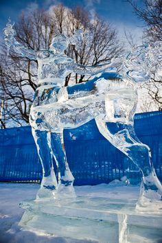 Centaur! Ice Sculpture.