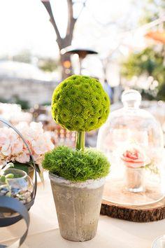 Topiary greenery