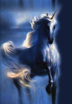 unicorn.............................................lbxxx.