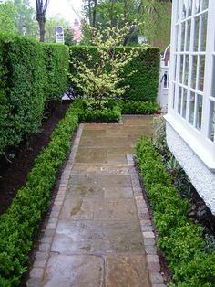 path.jpg : York stone, reclaimed yorkstone paving, new york stone paving, york stone steps