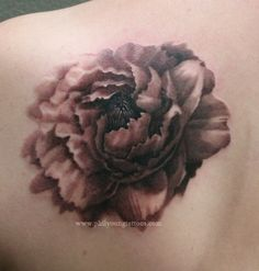 Another flower tattoo...it says chrysanthemum but I'm not sure?