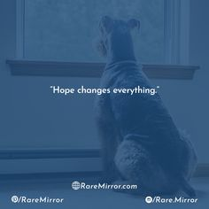 Rare Mirror is a digital media platform which reflects on the regular basis in the world of Trending News, Fashion, Quotes, Sports, Entertainment & more. Motivational Quotes, Inspirational Quotes, Trending Topics, Fashion Quotes, Digital Media, Relationship Quotes, Love Quotes, Life Coach Quotes, Qoutes Of Love
