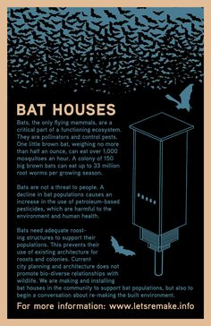 Bat House-what color to paint your bat house | My big girl ...