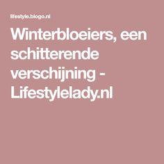 Winterbloeiers, een schitterende verschijning - Lifestylelady.nl