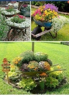 Beauty in gardens