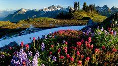 Natural scenery around the world wallpaper  World