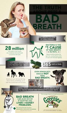 February is National Pet Dental Health Month! Bad breath in pets is nothing to smile about, and it's actually a sign of oral disease. Learn the facts about your pet's dental health.
