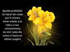 ▶ QUEDA PROHIBIDO poema de Pablo Neruda - YouTube