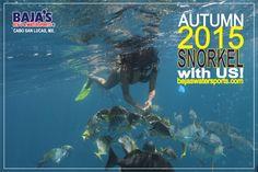 Disfruta #Esnorkelear en #CaboSanLucas!  Enjoy #Snorkeling in #CaboSanLucas!  #Bajaswatersports #Cabo #MedanoBeach www.bajaswatersports.com T. (624) 1443688 y 1434599