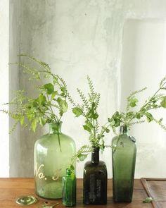 botanisch interieur gras in vaas - Dutch Dilight