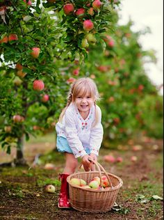 Ideas Funny Kids Pictures Dreams For 2019 Apple Orchard Photography, Autumn Photography, Children Photography, Family Photography, Funny Pictures For Kids, Fall Pictures, Funny Kids, Fall Pics, Apple Garden