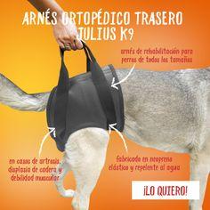 El arnés ortopédico para perros Julius K9 trasero mejora la calidad de vida de aquellas mascotas que sufren cualquier tipo de daño en el tren posterior. Es un accesorio ideal para perros con movilidad reducida debido a la artrosis, la displasia de cadera o las hernias discales, entre otros problemas.