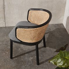 Panos Chair | cate & nelson design studio Black And White Dining Room, Black Dining Chairs, Cafe Furniture, Rattan Furniture, Cane Back Chairs, Best Leather Sofa, 70s Home Decor, Mid Century Chair, Dining Table Design