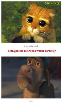 Którą postać ze Shreka lubisz bardziej? http://www.ubieranki.eu/quizy/co-wolisz/494/ktora-postac-ze-shreka-lubisz-bardziej_.html#CoWolisz