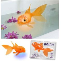 This site has tons of fun stuff- such as a floating, glowing koi fish. www.coolstuffexpress.com