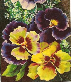 Purple and Yellow Pansies on Best Wishes Vintage by TheOldBarnDoor, $4.00