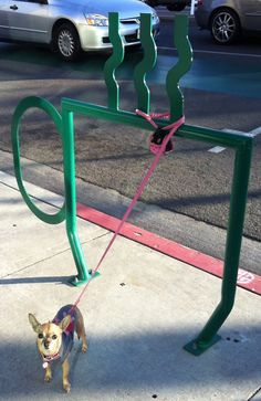 bike rack in long beach ca (& bailey)