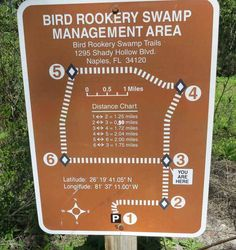 Corkscrew Bird Rookery Swamp Trail has excellent signage.