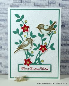 Birds & Branches Christmas Card - JanB Cards Christmas Wishes, Christmas Cards, Wink Of Stella, Bird On Branch, Flower Stamp, Bird Cards, My Stamp, Stamping Up