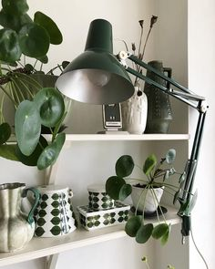 #pilea Home Interior Design, Interior Architecture, Boho Kitchen, Kitchen Decor, Boho Home, Beautiful Interiors, My Room, Home And Living, Decoration