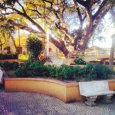 > Buen fin de semana #Jaraguenses https://www.instagram.com/p/BBKo3SjGOtg/