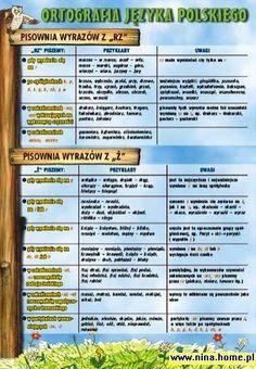 Ortografia języka polskiego 7 plansz