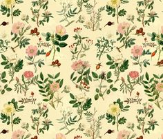 Rosarum fabric by erniekocats on Spoonflower - custom fabric