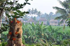 Yoga: A Retreat – The Yoga Barn Bali  http://blog.freepeople.com/2012/06/yoga-retreat-yoga-barn-bali/