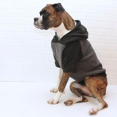 Dog Hoodie Large Dog Sweater Clothing for Girl/Boy in Black and Grey - Tap the pin for the most adorable pawtastic fur baby apparel! You'll love the dog clothes and cat clothes! Large Dog Clothes, Pet Clothes, Dog Clothing, Large Dog Sweaters, Dog Hoodie, Dog Harness, Dog Leash, Dog Coats, Large Dogs