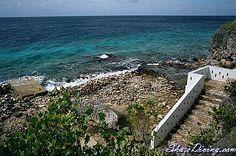 Karpata, Bonaire.. ultra fav dive site