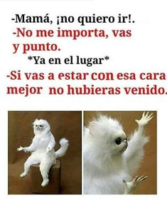New memes en espanol chistosos ideas Mexican Funny Memes, Funny Spanish Memes, Spanish Humor, Funny Relatable Memes, Funny Jokes, Mom Funny, Memes Humor, New Memes, Chat Facebook
