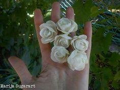 White sugar spray roses