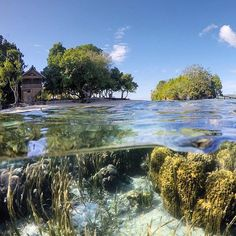 Poyalisa Island. #letstravelindonesia #travelingindonesia Location: Tojo Una-Una Regency, Togean, Central Sulawesi, Indonesia. Great photo by @rajaregar  Now Let's Travel Indonesia is available on Line  Line ID: @letstravelindo (pakai @ ya :D)