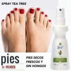 Tea Tree, Essential Oils, Feet Care, Aromatherapy, Fingernail Designs, Fur, Mists, Essential Oil Uses, Essential Oil Blends