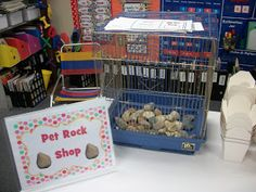 Pet Rock Activity... So cute!
