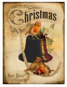 JanetK.Design Free digital vintage stuff: Christmas Birds
