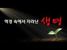 전능하신 하나님 교회 복음 단편영화《역경 속에서 자라난 생명 》