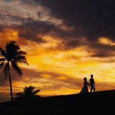 いいね!86件、コメント1件 ― ハワイ挙式のCheersWedding チアーズウェディングさん(@cheers_wedding)のInstagramアカウント: 「Sunset photo. . ◆◇12月撮影限定のスペシャルプラン◇◆. . ハワイサンセット撮影が$980で叶えられます! . ●100着以上から選べるウェディング衣裳* ●ヘアメイク*…」