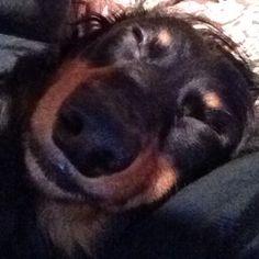 Really sleeping