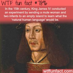 WTF Fun Facts is updated daily with interesting & funny random facts. We post about health, celebs/people, places, animals, history information and much more. New facts all day - every day! Wtf Fun Facts, Funny Facts, Random Facts, Strange Facts, Crazy Facts, Random Stuff, Odd Facts, Random Trivia, Trivia Facts