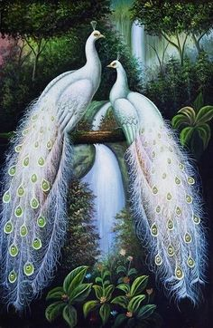 Beautiful Peacock Paintings | Home Decor HD Print art painting on canvas(No frame)Peacock Couples ...