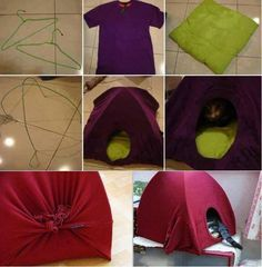 Cat tent!
